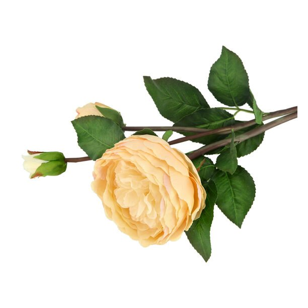 Artificial Flower Rose Champagne image number 1