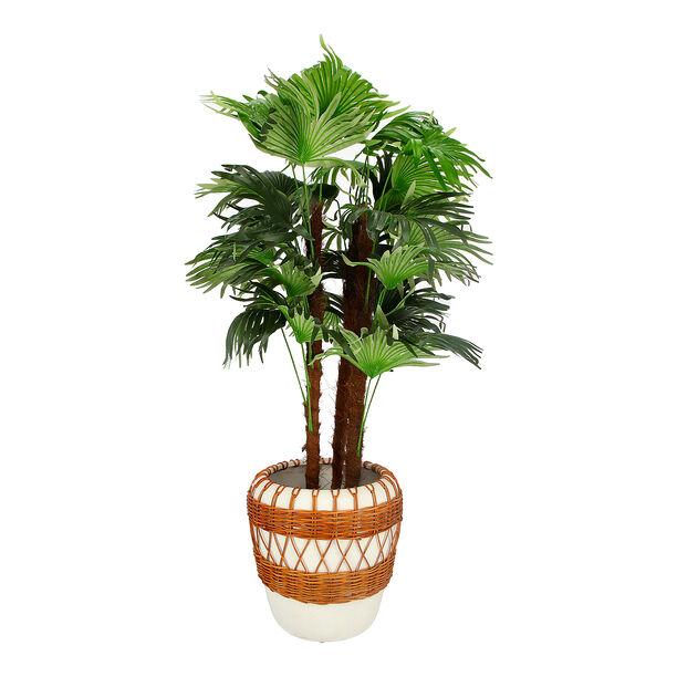 اناء نباتات image number 1