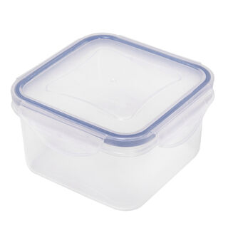 Alberto Plastic Food Saver  Square Shape V-0.4L Blue Lid