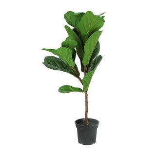 Artificial Tree Ficus Lyrata 21 Lvs