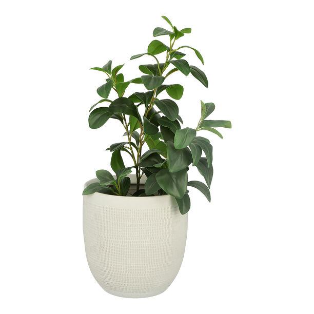 إناء نباتات سيراميك رمادي image number 1