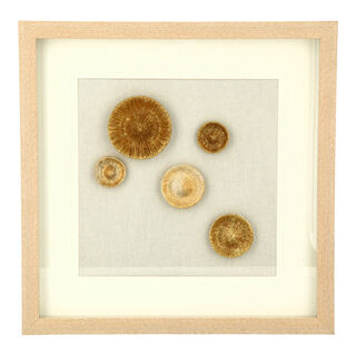 Wall Art Framed Object Circles Gold