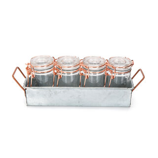 Alberto 4 Pieces Glass Mini Spice Jars With Copper Clip Lid And Metal Stand