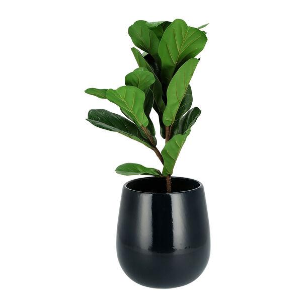 إناء نباتات سيراميك أسود image number 1