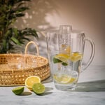 Alberto Acrylic Pitcher With Ice Tube V: 2.5 L image number 0
