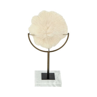 Home Accent Coral 18.5X12X33 Cm